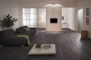 Salon intérieur moderne aménagé gris